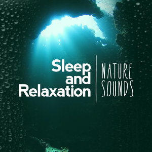 Nature Sounds for Sleep and Relaxation Nature Sounds Nature Music Sounds of Nature 歌手頭像