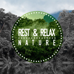 Rest & Relax Nature Sounds Artists|Nature Sounds for Sleep and Relaxation 歌手頭像