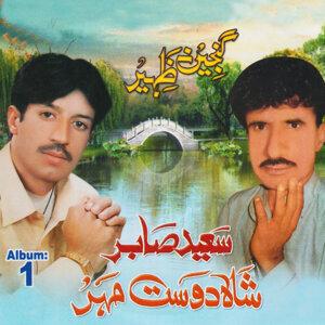 Saeed Sabir, Shah Dost Mehar 歌手頭像