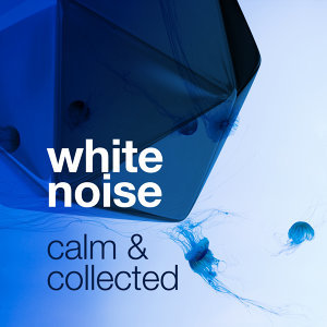 Outside Broadcast Recordings|Soothing White Noise for Relaxation|White Noise Meditation 歌手頭像