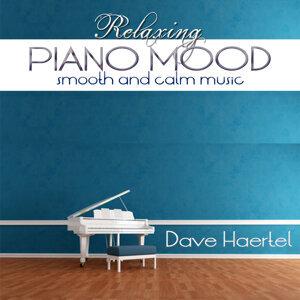Dave Haertel 歌手頭像