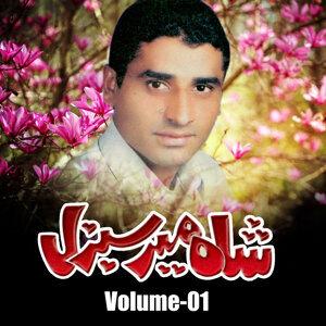 Shah Mir Sabzal 歌手頭像