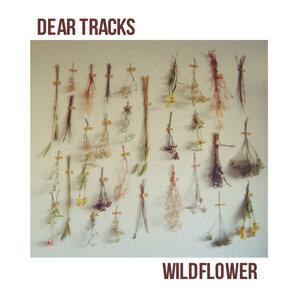 Dear Tracks 歌手頭像