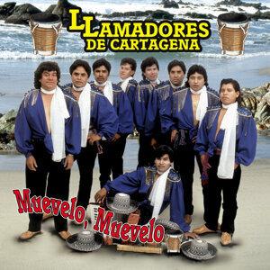 Llamadores De Cartagena 歌手頭像