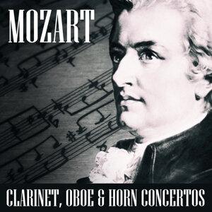 Alberto Lizzio, Mozart Festival Orchestra 歌手頭像