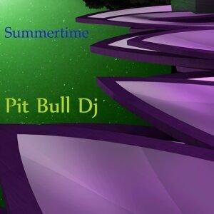 Pit Bull DJ 歌手頭像