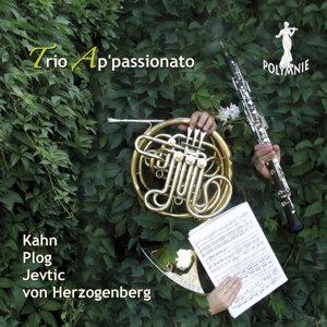 Trio Ap'Passionato 歌手頭像