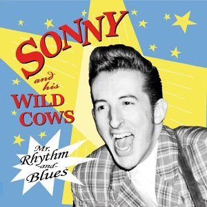 Sonny And His Wild Cows 歌手頭像