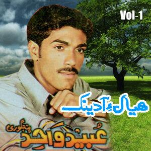 Ubaid Wahid 歌手頭像