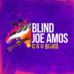 Blind Joe Amos 歌手頭像