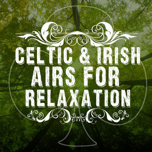 Instrumental Irish Music Relaxing Celtic Music 歌手頭像