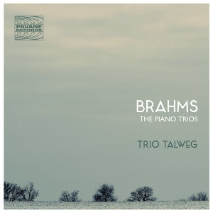 Trio Talweg 歌手頭像