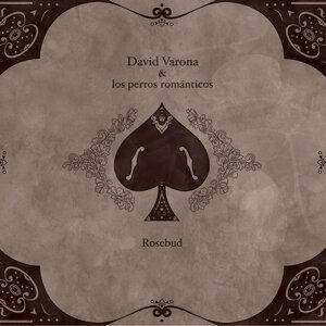 David Varona & Los Perros Románticos 歌手頭像