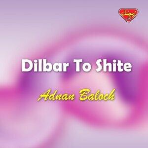 Adnan Baloch 歌手頭像