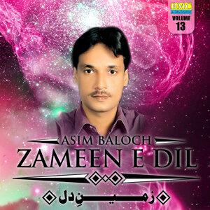Asim Baloch 歌手頭像