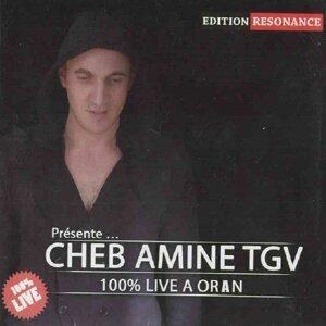 Cheb Amine TGV 歌手頭像