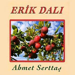 Ahmet Serttaş 歌手頭像