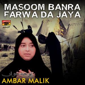 Ambar Malik 歌手頭像