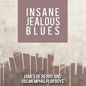 James De Berry and His Memphis Playboys 歌手頭像
