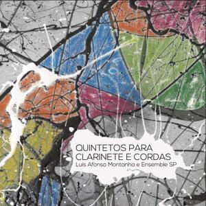 Luis Afonso Montanha e Ensemble SP 歌手頭像