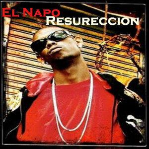 El Napo 歌手頭像