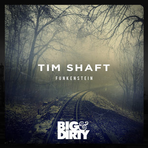 Tim Shaft
