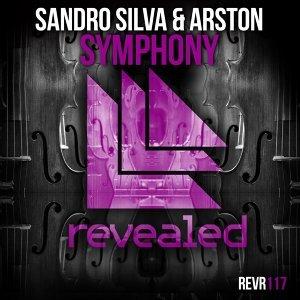 Sandro Silva and Arston 歌手頭像