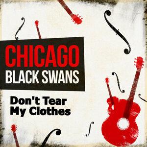 Chicago Black Swans 歌手頭像