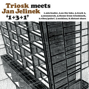 Triosk Meets Jan Jelinek