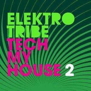 Tech My House 2 歌手頭像