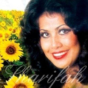 Sharifah Aini 歌手頭像
