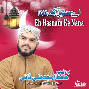 Pro. Hafiz Amjad Ali Sani 歌手頭像