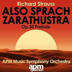 APM Music Symphony Orchestra 歌手頭像