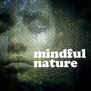 Sounds of Nature Relaxation|Sounds of Nature White Noise for Mindfulness, Meditation and Relaxation 歌手頭像