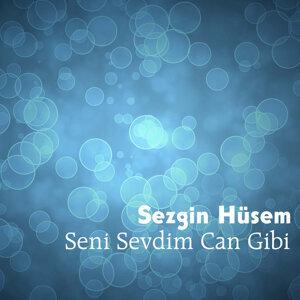 Sezgin Hüsem 歌手頭像