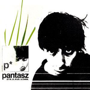 Pantasz 歌手頭像