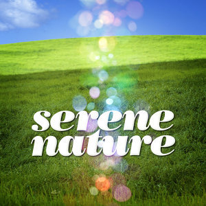 Nature Sounds 2015|Nature Sound Collection|Nature Sounds 歌手頭像