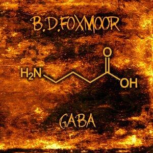 B.D.Foxmoor 歌手頭像