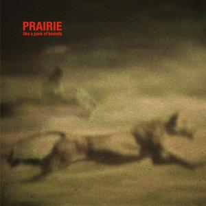 Prairie 歌手頭像