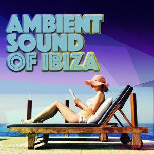 Ambiente, Future Sound of Ibiza, Ibiza Del Mar 歌手頭像