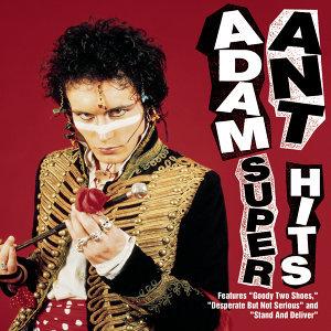 Adam Ant (亞當安特) 歌手頭像