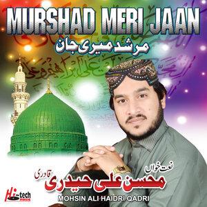 Mohsin Ali Haidri Qadri 歌手頭像