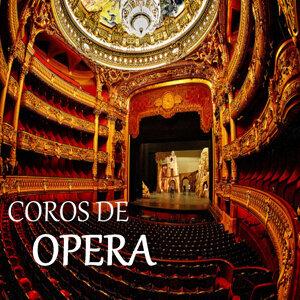 Orchester der Wiener Staatsoper, Chor der Wiener Staatsoper 歌手頭像