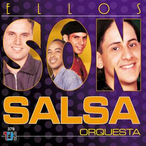 Son Salsa 歌手頭像