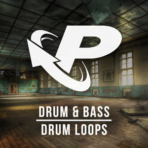 Prime Loops 歌手頭像