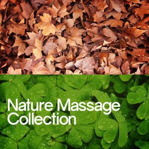Massage Tribe, Nature Sound Collection, Sonidos de la naturaleza Relajacion 歌手頭像