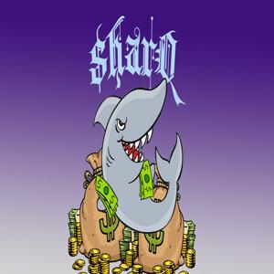 Sharq 歌手頭像