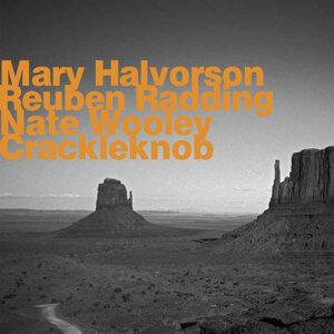 Mary Halvorson, Reuben Radding, Nate Wooley 歌手頭像