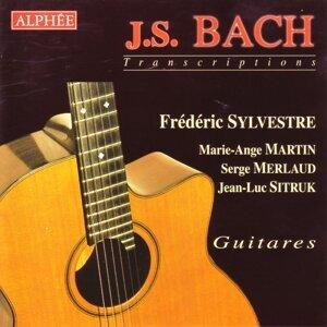 Frederic Sylvestre/Marie- Ange Martin/Serge Merlaud/Jean-Luc Sitruk 歌手頭像