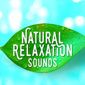 Nature Sound Collection|Nature Sound Series|Nature Sounds 2015 歌手頭像